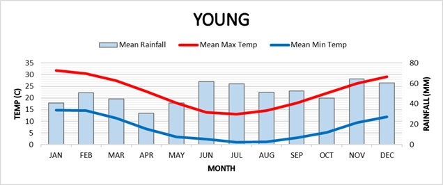 Young climate graph